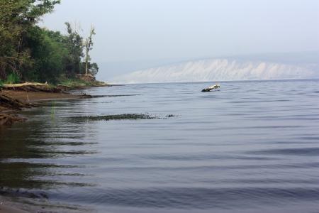 volga: Volga beauty