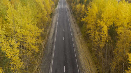 Autumn. Road top view. Travel background. Road in yellow fall forest. Highway on sunny autumn day