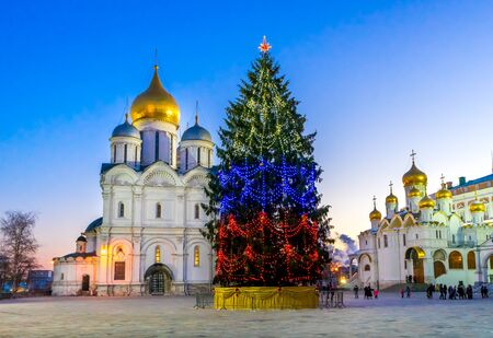 patriarchal: Christmas tree on the Cathedral Square of the Moscow Kremlin