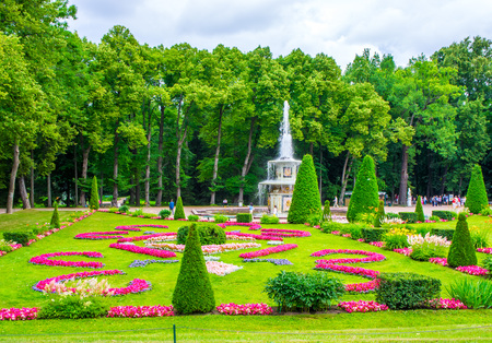 psique: RUSSIA, Peterhof - JULY, 17, 2013. Flower parterre in the lower park of Peterhof