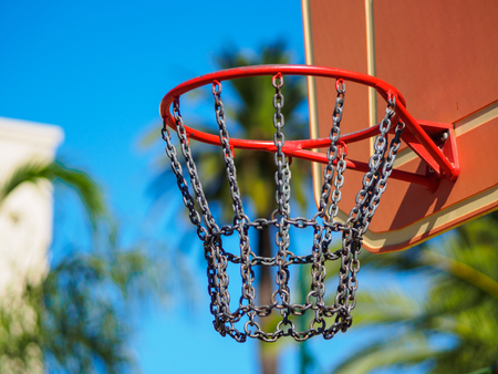 A close up of a basketball hoop with some palm trees on a blurred background.