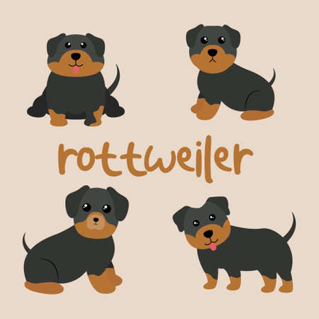Set Character Animal In Various Poses Of Cute Rottweiler Dog Is Sitting, Sleep, and Jumping. Vector Illustration 矢量图像