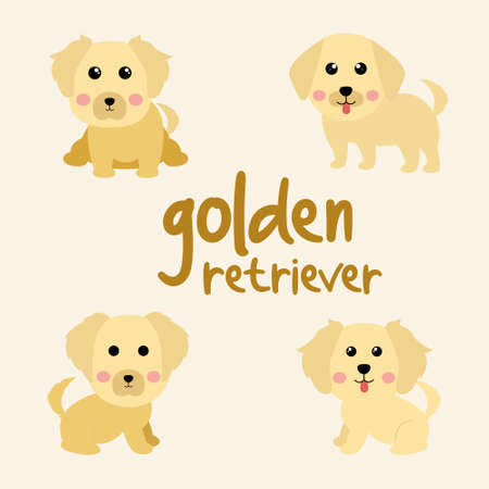 Set Character Animal In Various Poses Of Cute Golden Retriever Dog Is Sitting, Sleep, and Jumping. Vector Illustration 矢量图像