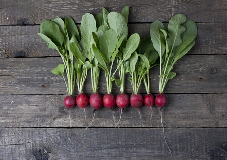 Line of radish on wooden background, organic food