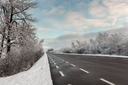 frozen trees: Frozen trees and snowy land road at winter