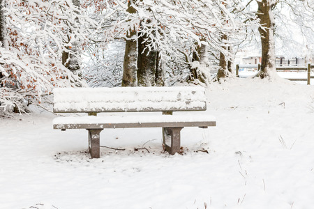 frozen trees: Frozen trees and white bench at winter Stock Photo