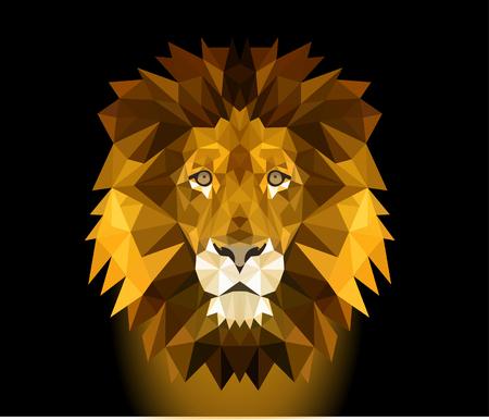 leeuwenkop Stock Illustratie