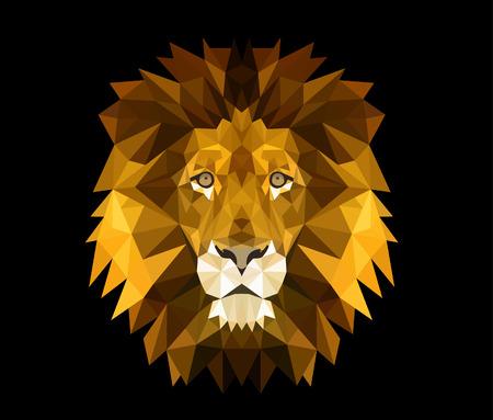 Tête de lion Banque d'images - 50165151