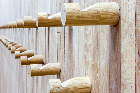 coat rack: an wall from wood whit some coat rack in wood