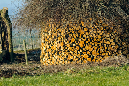 wooden hut: cut trees are stacked like an wooden hut