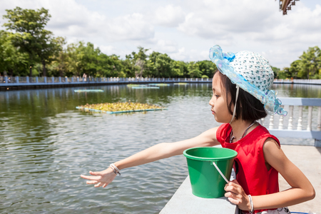many babies: at the temple of Buddha there is a large pond with many fish of which the girl was feeding