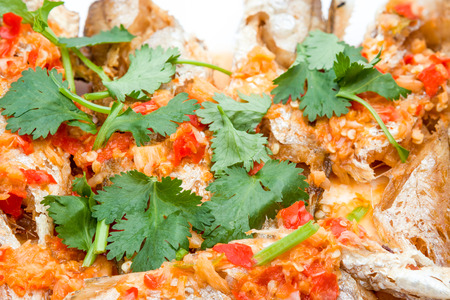 prepared fish: prepared fish with red peppers and some coriander leaves