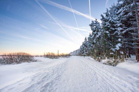 winter sunset at the hautes Fagnes in belgium 스톡 콘텐츠