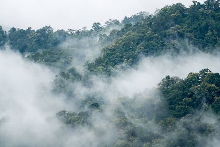 in the north of Thailand on a rainy day fog forms in the mountains Stock fotó
