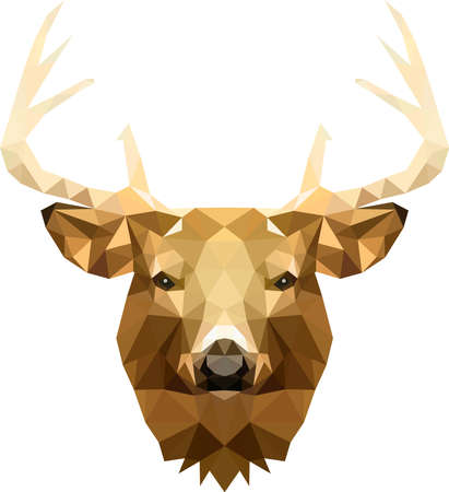 A Stag head with beautiful antlers in triangle cubes, a Ruler in the Group