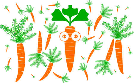 Beautifully shaped carrot with a white background in illustrator