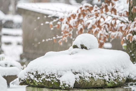 In a cemetery or cemetery, there is a skull with moss on a gravestone and its covered whit snow.
