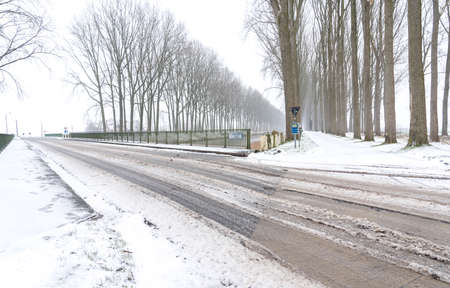A towpath for cyclists and pedestrians runs between two rows of trees during the snowy winter