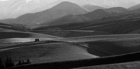 dep�sito agua: Paisaje blanco Negro de rodar tierras agr�colas que muestran el ganado, pasto, �rboles y un tanque de agua