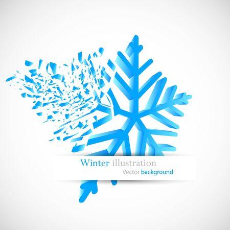 debris: Snowflake with debris