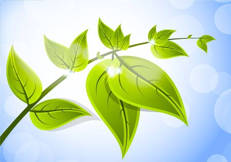 biologic: Bright background with branch leaves