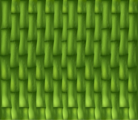 lacing: Background with lacing of green bamboo texture Stock Photo