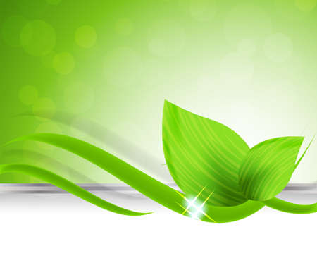 Abstract bright floral background with green leaves photo