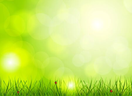 Bright green background with grass and ladybug Stock Vector - 17661929