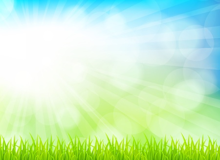 sun beam: Spring background with grass. Bright illustration