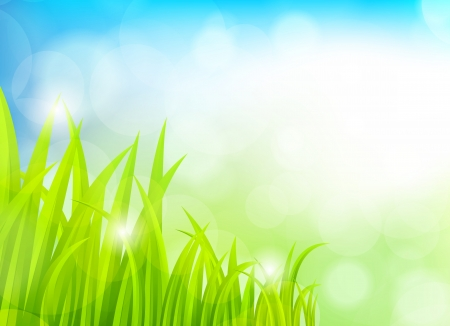 Spring background with grass Vector