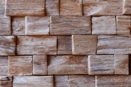 Wood texture, Ecological background photo