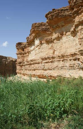 Desert rock, blue sky, green grass