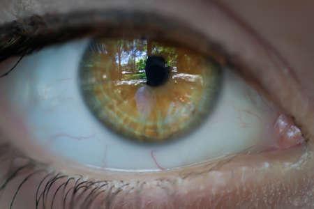 Beautiful eye of  a girl Stock Photo - 7917906