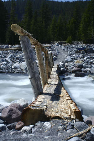 trail bridge over a stream in Rainier National Park photo
