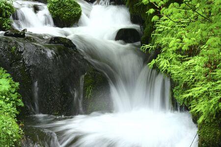 Beautiful Waterfall in Oregon along the Columbia River Gorge