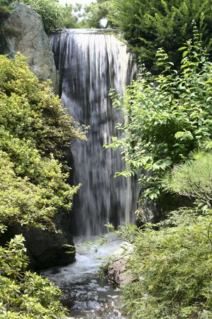 Lush greenery and waterfall on a summer day photo