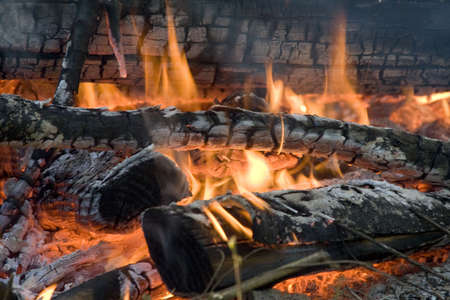 coals: Fire with burning logs and coals Stock Photo