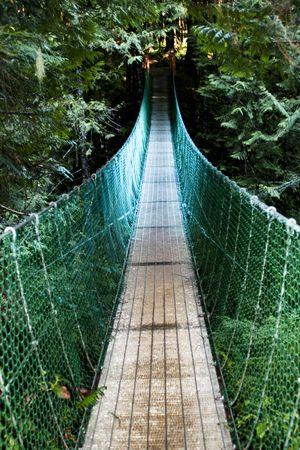 Scary suspension bridge in British Columbia, Canada