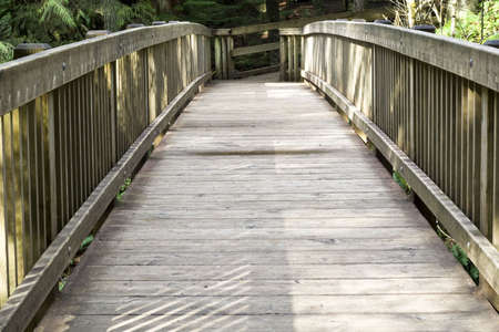 Wooden bridge on a hiking trail photo