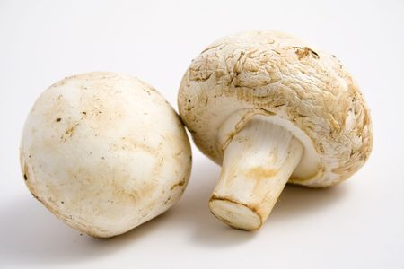 Two fresh mushrooms on a clean white background