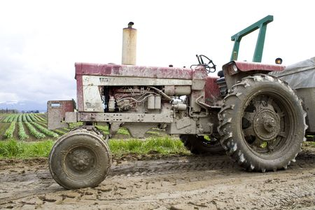 muddy: A very muddy tractor in a field