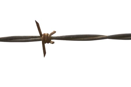 Barbed wire detail on a white background Stock Photo