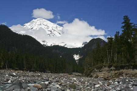 mt rainier: Mt. Rainier Stock Photo