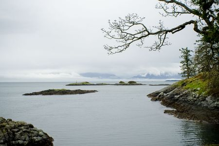 strait of juan de fuca: Winter shoreline with Olympic mountains in the distance