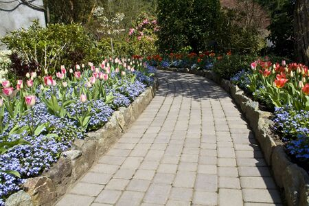A garden footpath with beautiful blooming flowers in spring