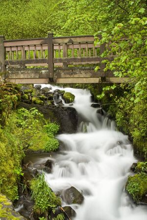 A beautiful waterfall in the Pacific Northwest Stock Photo
