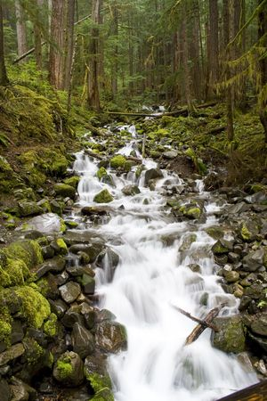A beautiful waterfall on the Sol Duc River in Olympic National park Stock Photo - 3223943