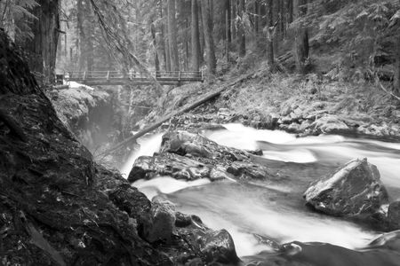Sol Duc Falls in  National Park Stock Photo - 3223928