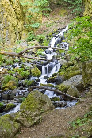 A beautiful waterfall in the Columbia River Gorge Stock Photo - 3275973