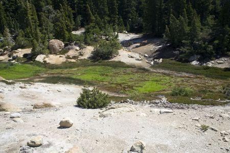 hydrothermal: Green algae near hydrothermal areas in Lassen Volcanic National Park